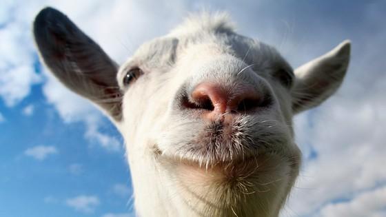 [WTF] Goat Simulator : Le Jeu Qui va Vous Rendre... Chèvre !
